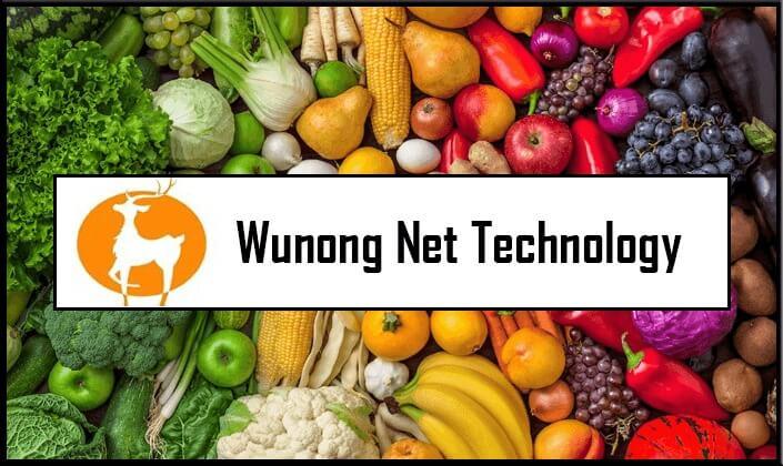wunong net technology stock